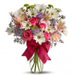 Řezané květiny - Ilustrační obrázek